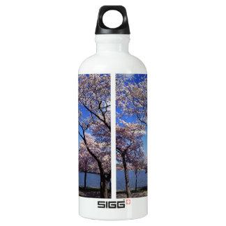 Cherry blossom in Washington DC Aluminum Water Bottle