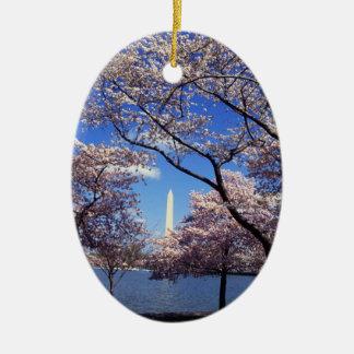 Cherry blossom in Washington DC Ceramic Ornament