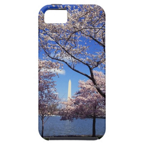 Cherry blossom in Washington DC iPhone SE/5/5s Case
