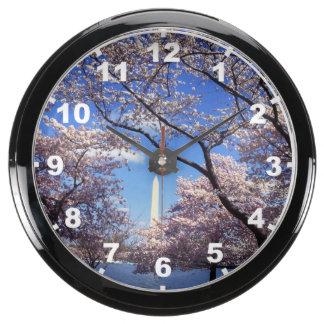 Cherry blossom in Washington DC Photo Aquavista Clock