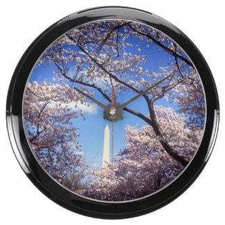 Cherry blossom in Washington DC Photo Fish Tank Clocks