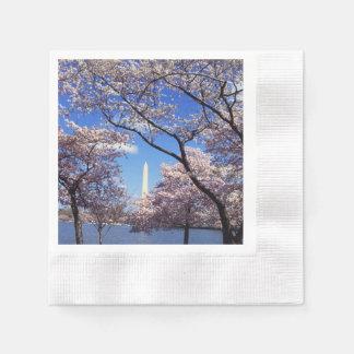 Cherry blossom in Washington DC Photo Paper Napkins