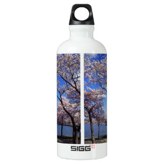 Cherry blossom in Washington DC SIGG Traveler 0.6L Water Bottle
