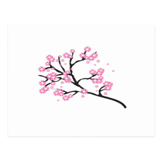 Cherry Blossom Inexpensive Bridal Shower Party Postcard