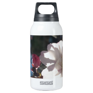 Cherry Blossom Insulated Water Bottle