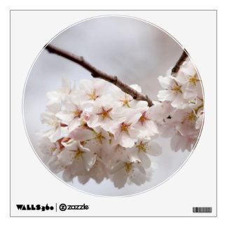 Cherry Blossom. Intertwined Flowering Twigs Wall Sticker