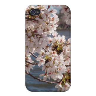 Cherry Blossom (iPhone case) Covers For iPhone 4