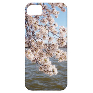 Cherry Blossom iPod Case iPhone 5 Covers