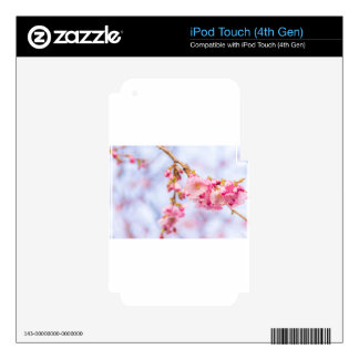 Cherry Blossom iPod Touch 4G Decals