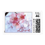 pink Cherry Blossom Love postage stamps