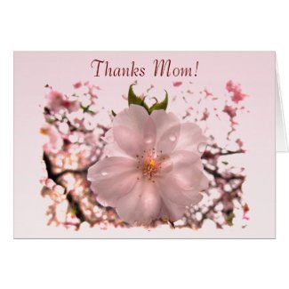 Cherry Blossom Mother's Day Card