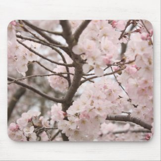 Cherry Blossom Mousepad mousepad
