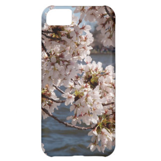 Cherry Blossom over the Potomac (iPod 4 case) Cover For iPhone 5C
