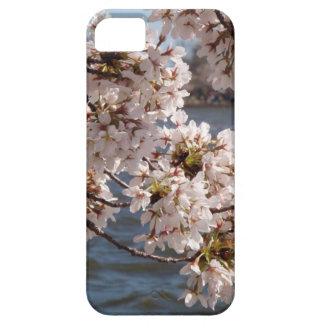 Cherry Blossom over the Potomac (iPod 4 case) iPhone 5 Case