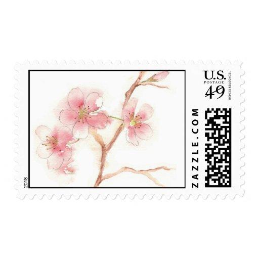 Cherry Blossom Postage Stamp
