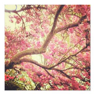 Cherry Blossom print card
