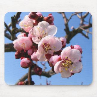 Cherry Blossom Sakura Mouse Pad