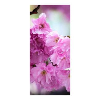Cherry Blossom Sakura Rack Card