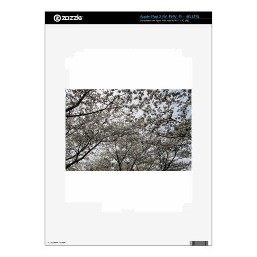 Cherry Blossom Skins For iPad 3