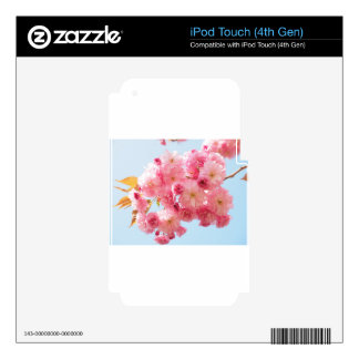 cherry blossom skins for iPod touch 4G