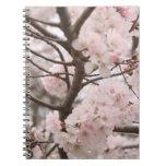 Cherry Blossom Spiral Notebook