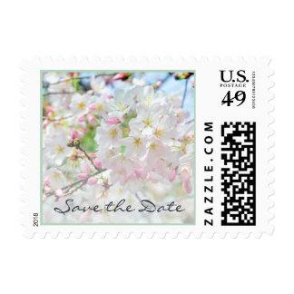 Cherry Blossom Springtime Wedding Postage