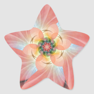 Cherry Blossom Star Sticker