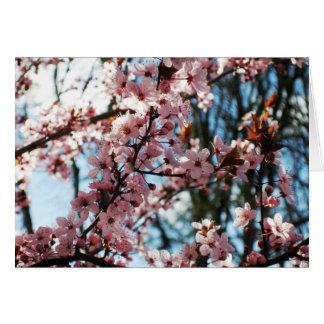 Cherry Blossom Stationery Note Card