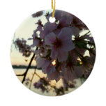 Cherry Blossom Sunset in Washington DC Ceramic Ornament