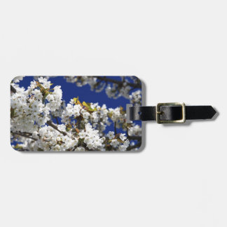 Cherry Blossom Tag For Luggage