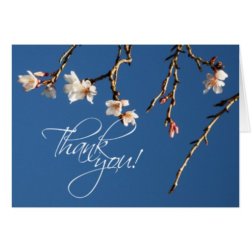 Cherry Blossom Thank You Note Greeting Card