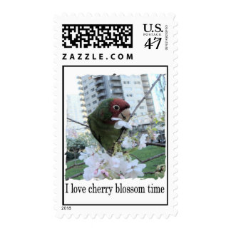 Cherry Blossom Time Postage Stamp