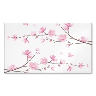 Cherry Blossom - Transparent Background Magnetic Business Card
