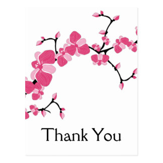 Cherry Blossom Tree Branch Thank You Postcards 2