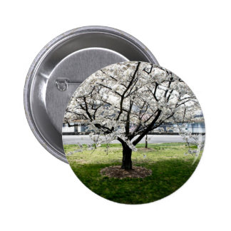 Cherry Blossom Tree Pins