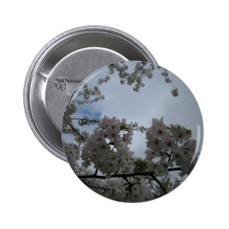 Cherry Blossom Tree Pinback Buttons