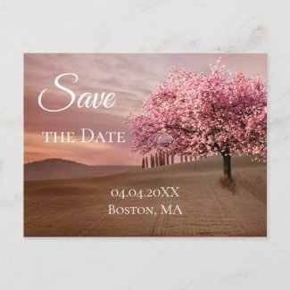 Cherry Blossom Tree Save the Date Postcard