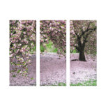 cherry blossom tree three panel wrapped canvas canvas print