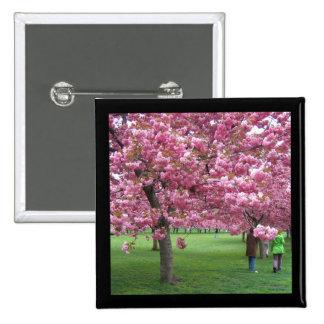 Cherry blossom trees pin