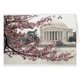 Cherry Blossom Washington DC Card