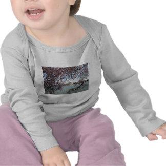 Cherry Blossom Washington DC T Shirts