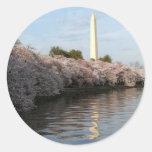 Cherry Blossom Washington monument Round Stickers
