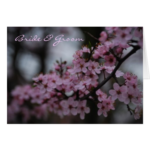Cherry Blossom Wedding Greeting Cards