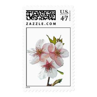 Cherry Blossom White Postage