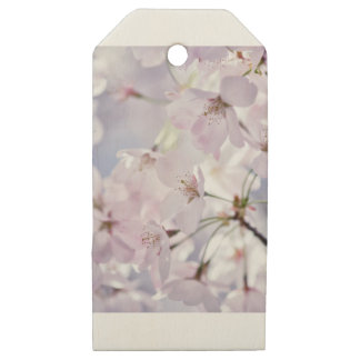 Cherry Blossom Wooden Gift Tags