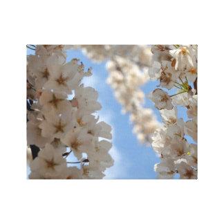 Cherry Blossom Wrapped Canvas
