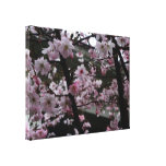 Cherry Blossom Wrapped Canvas Canvas Prints