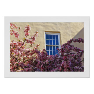 Cherry Blossomed Window Poster