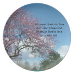 cherry blossoming dinner plates