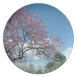 cherry blossoming plates